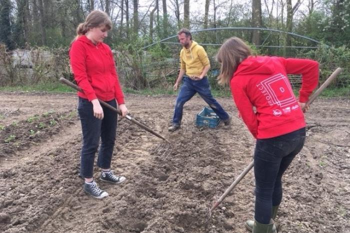 Project D onderzoekt: van boer tot bord