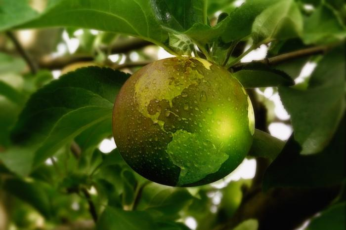 Inspiratie en lesmateriaal over gezonde en duurzame voeding via KlasCement