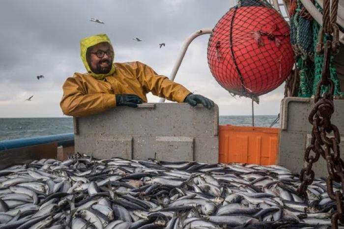 GoodFood@School Challenge 1: duurzame vis     (van 28/09 tot 2/10)