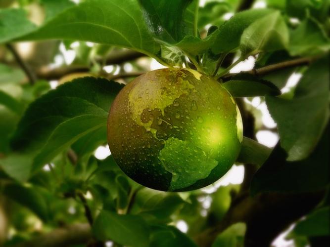 Lesmateriaal rond gezonde en duurzame voeding
